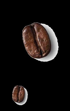 chicco - bellcaffe - italia - modica
